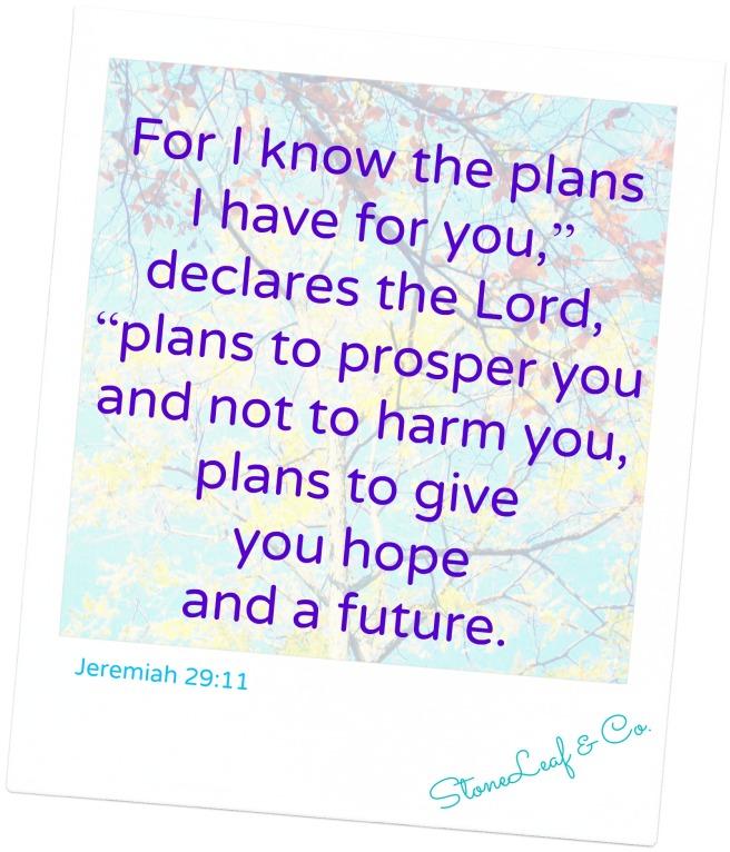 jeremiah.29.11