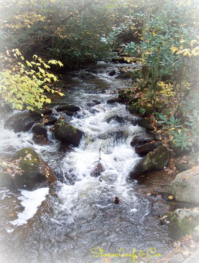 roaring creek.